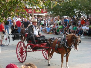 Buggy parade